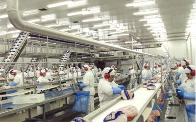 Ministro do Trabalho afirma que o cooperativismo é um exemplo para o País